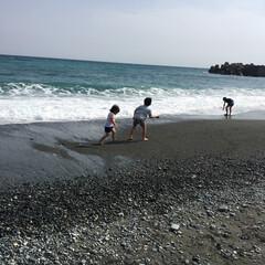 水遊び/海/おでかけ 先々週の海の写真です(^^) 子供達がも…