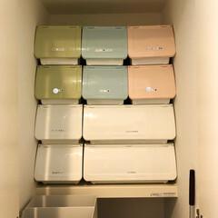 整理整頓/整理収納/下着収納/タオル収納/洗面所/ニトリ/... 洗面所の収納上段は、タオル類、男子の下着…