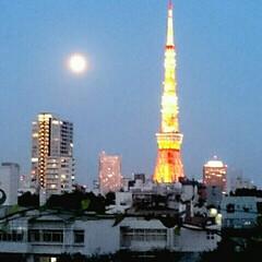 月/東京タワー