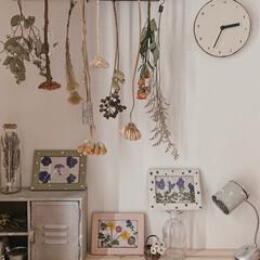 ディスプレイ/玄関インテリア/日々の暮らし/暮らしを楽しむ/ミルクペイントforウォール/ミルクペイント/... 玄関に飾ってみました♡⤴︎⤴︎  これか…