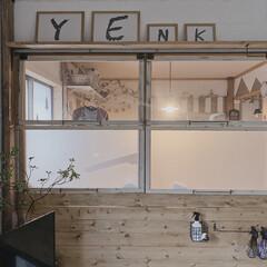 P&G/ファブリーズ ナチュリス  ミントリーフ&ジュニパーベリー 本体 370ml | ファブリーズ(部屋用)を使ったクチコミ「リビングからチラリと見える子ども部屋𖠋 …」