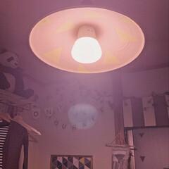 日々の暮らし/子供のいる暮らし/子どもと暮らす/暮らしを楽しむ/ランプシェード/ランプシェードリメイク/... ライトアップするとこんな感じです♡  ペ…