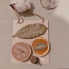 マグネット/リメイク雑貨/暮らしを楽しむ/DIY女子/ミルクペイント/インテリア雑貨/... 使わなくなってしまったセリアのプレートに…