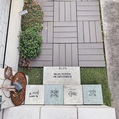 暮らしを楽しむ/小さなお庭/ガーデニング/ミルクペイント/お花のある暮らし/DIYのある暮らし/... ガレージ横の通路。  水はけの悪い土が広…