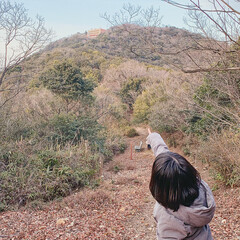 旅行/風景/おでかけワンショット/暮らしを楽しむ/山/癒やし 宿泊したホテルはね、  山のてっぺんに見…