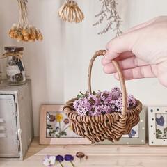 セリア/かご/おうち時間/日々の暮らし/暮らしを楽しむ/お花摘み/... 今年もお庭のタイムがモリモリ花を咲かせて…