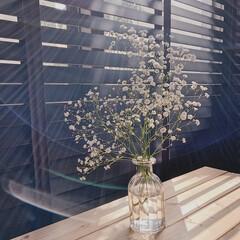ウッドブラインド/暮らしを楽しむ/カフェスペース/カフェ風インテリア/窓辺インテリア/かすみ草/... こんにちは♡  ダイニング奥に作ったca…