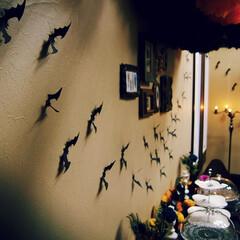 ハロウィン/パーティ/飾り付け/コウモリ ハロウィンパーティの飾り付け。 あとは料…