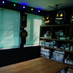 ハロウィン/かぼちゃ/パンプキン/飾り付け ハロウィンまで待ちきれないパンプキンたち。