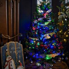 クリスマスツリー/クリスマス/デコレーション/カラフル/クリスマス2019 クリスマスツリーは何種類かあるのですが、…