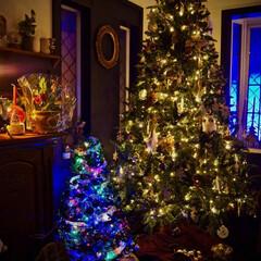 クリスマスツリー/クリスマス/デコレーション/クリスマス2019 我が家には何個かクリスマスツリーがありま…