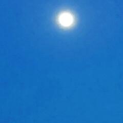 月/風景 満月?綺麗ですね🌜