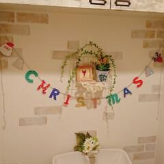 トイレインテリア/ダイソー/セリア/インテリア/クリスマス 中々壁に飾り付けしようと思ってから数ヵ月…