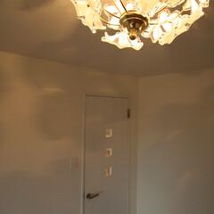 照明/かわいい/おしゃれ/部屋づくり/模様替え/部屋作り ちなみにこの照明はLIMIAにも掲載して…