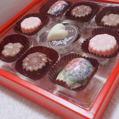 かわいい/おいしい/チョコ おいし~!!(*´▽`*)  多分、これ…