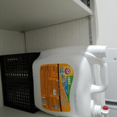コストコ/脱衣所 コストコの洗剤、ボタン押すだけで出てきて…