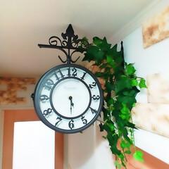 インテリア雑貨/インテリア/玄関/ドリームクッションレンガ/フェイクグリーン/両面時計/... 壁掛け両面時計を買いました! フェイクグ…
