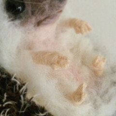 羊毛/羊毛フェルト/ハリネズミ/フェルト/Fête/フェット/... 髭や手指もあります。