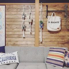 賃貸/DIY/板壁/元和室/プラハン/塩ビパイプ 1.改善したかった点 元和室なので、和室…