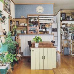 賃貸/壁紙/原状回復/オープンキッチン/DIY/植物 オープンキッチンの我が家♡♡ 賃貸なので…
