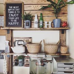 賃貸/DIY/ディアウォール/植物/水槽/書類ケース/... 1.改善したかった点 見せる収納をしたか…