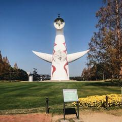 大阪/季節の花/ロハスフェスタ/万博記念公園/太陽の塔/プライベート/... 本日はロハスフェスタに行っていたので 太…