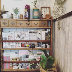 賃貸/DIY/原状回復/ブックシェルフ/ダイソーの木箱 ブックシェルフをDIY♡♡ 1番上の段に…