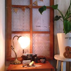 木製ガーランド/ガラスシート/アンティーク風ランプ/レトロカメラ/ディスプレイコーナー/照明器具 リビングのディスプレイコーナー。 アンテ…