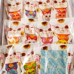 招き猫/おでかけ お土産の「福をまねきゅ~🐾」☆猫の色によ…