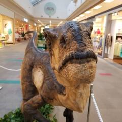 恐竜/おでかけ きょ…恐竜だぁ~(゜ロ゜; すごくリアル…