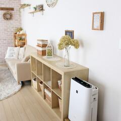 ルンバ/お掃除ロボット/空気清浄機/DIY/100均/家具/... 空気清浄機とお掃除ロボを一箇所に設置した…