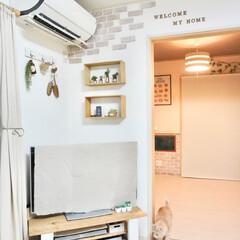 ダイソー/セリア/100均/DIY/暮らし ダイソー端材で飾り棚を簡単DIY。テレビ…(1枚目)
