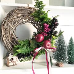 クリスマスリース/クリスマス/ナチュキチ/100均/リース/リメイク ナチュラルキッチンのベースに、庭の木や1…(1枚目)