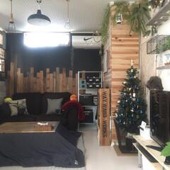 Xmasツリー/クリスマス/オーナメント/飾り/ハンドメイド/手作り/... 今年のXmasツリーのオーナメントは全て…