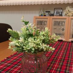 ショーケース/テーブルライナー/フェイク/グリーン/雑貨/インテリア/... グリーンやお花がある暮らしが好きです😊💕…