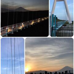 日本最長400mの大吊橋/ナイトスカイウォーク/三島スカイウォーク/ゴールデンウィーク/おでかけ 今日は御殿場のキャンプ富士フライトライン…