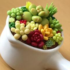 樹脂粘土/多肉植物/グリーン/雑貨/100均/セリア/... セリアの小さな陶器の器に樹脂粘土の多肉植…