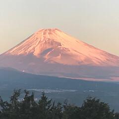 元旦/富士山/お正月 2018元旦   三島市からの富士山