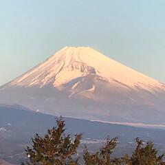 景色/富士山 三島市からの今朝の富士山🗻