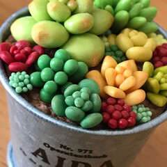 多肉植物/グリーン/雑貨/100均/セリア/ダイソー/... ダイソーの樹脂粘土で作った多肉植物をセリ…