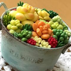 樹脂粘土/多肉植物/グリーン/雑貨/100均/セリア/... セリアの器に少しだけ手を加え 樹脂粘土の…