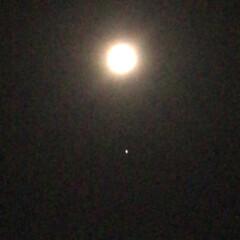 ピンクムーン/満月/夜空 今夜は満月🌕 ピンクムーンというそうです…
