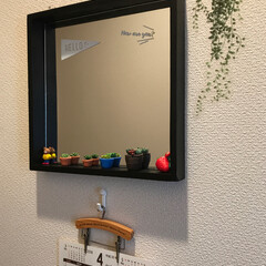 カレンダー/多肉植物/樹脂粘土/鏡/ディアウォール/セリア/... トイレに鏡をつけて見ました でと、この鏡…
