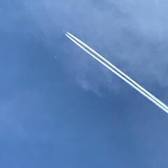 飛行機雲/青空 飛行機雲✈️