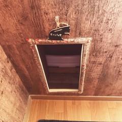 DIY/猫トイレ/押し入れ/くり抜き/車輪/猫トイレ入り口/... ニャ〜のトイレの場所を押し入れの下にdi…