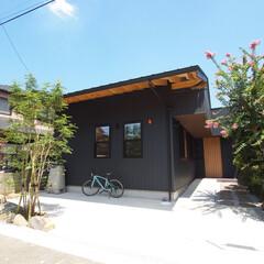 木の家/自然素材/猫/杉/国産材/木/... 領家の家。 猫と夫婦が暮らす、平屋のよう…