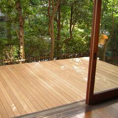 ウッドデッキ/庭/バリアフリー 庭先のウッドデッキ  部屋の床と同じ高さ…
