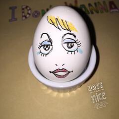 写真/茹で卵 写真作品 茹で卵アート
