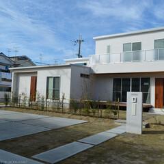 新築/二世帯住宅/オープン外構/芝 新築 オープン外構 二世帯住宅