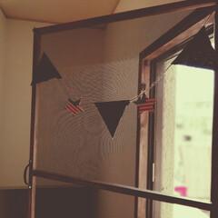 蚊/虫/蝶番/小窓/網戸 小窓  網戸がなく夏場でも窓を開けられな…